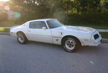 Trans AM Restoration / This is a 1978 Pontiac Trans AM that we purchased from my best friend Martin and we have been working on it for 8 years.