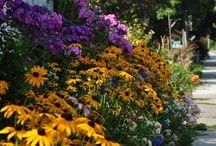 I Love to Garden