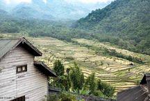 Nagaland / Destination and places of Nagaland, India