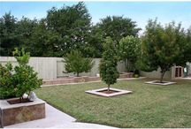 Outdoor Spaces // Landscaping & Plants / Front yard, back yard & side yard landscaping designs, decks and plants / by Kristen Burnett