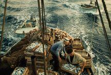 visserij schepen