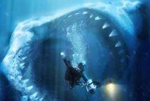 Unrealistic ocean animals