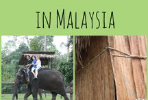 Malaysia Travel  / Travel tips, travel advice and travel inspiration for travel in Malaysia! Includes Kuala Lumpur, Batu Caves, Langkawi and Malaysian Borneo