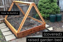 1st garden
