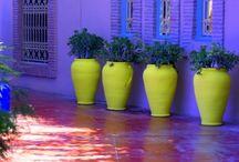 Kleur: Paars / Purple / Mooie foto's in de kleur paars