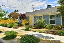 Drought-Resistant Yards