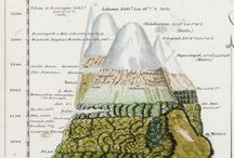 Cartography / Maps that double as art