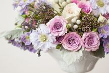 Flowers for centerpieces / Centerpieces