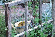 Mat i hagen / Kjøkkenhagen
