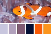 Inspiring Color Combinations 2