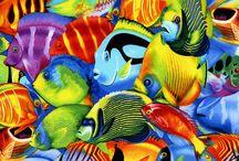B. FISH***