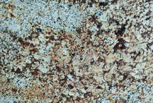Stone World London ¦ Granite