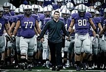 """I Bleed PURPLE / I graduated from University of St. Thomas, now work there, coach at St. Catherine University, Love the Minnesota Vikings so I've been told my whole life that """"I BLEED PURPLE."""" Plus I cheer on Northwestern University for my roommate! / by Sarah Huinker"""