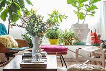 Living room / by Cindi Hedstrom