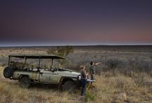 Safari Accommodation / Luxury lodge accommodation at safari destinations in South Africa.