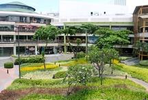 Ayala Terraces Cebu