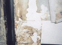 MOLD AND MILDEW PROBLEMS STINK!! / Here is a great solution we recommend, Texturglas!! It has been solving mold and mildew problems in hotels and offices for over 30 years. Transform ordinary or problem walls into beautiful walls with texture and color. Features include the ability to strengthen, stabilize and protect walls, while reducing the risk of mold and mildew growth.