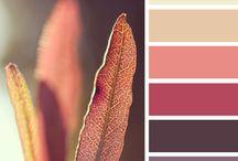 Color o gamas de color