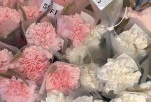 maybe flowers~ / Flowery albom