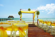 Destination Beach Wedding / by Nicolette Alicia