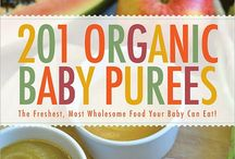 Eat // Organic baby food ideas / by Wild Dill