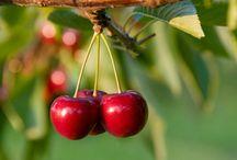 I love Cherry / Amor incondicional ao vermelho e as cerejinhas <3