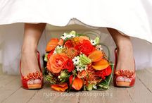 Pantone Color of the Year 2012 ~ Tangerine Tango / Tangerine is the new IT color of 2012!