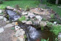 Ponds / Pond Designs, Installs, Backyard Ponds, Koi Ponds, Water gardens, Ponds.