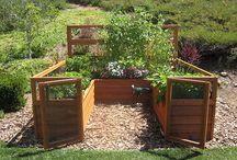 Gardening / by Janelle Barr