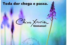 Chico X