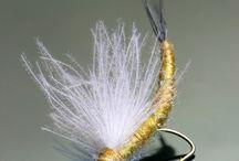 Pescuit la muscă