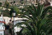 Mi Alicante