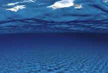 11 The Sea Meri