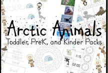 Artic Antarctic Resources