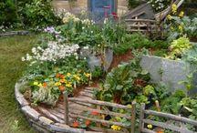 tuin/ moestuin