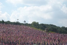 The Healing Field~9/11/2012 / by Tina Sarber