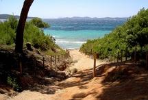 L'île de Porquerolle (pas un parc national)