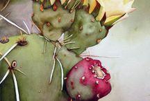 My Cactus