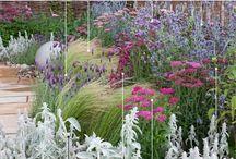 Garden projekt