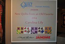 New Quilts from An Old Favorite:  Carolina Lily