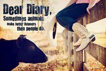 Agriculture.. My love! / by Ashton Hosta