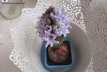 Çiçeklerim / My Flowers