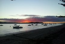 The Bays / Beautiful Buckland's Beach and the Peninsula!