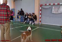 Διήμερο σεμινάριο 1ο Γενικό Λύκειο Ν.Ιωνίας / Οι φωτογραφίες τραβήχτηκαν στα πλαίσια ενός διήμερου σεμιναρίου που πραγματοποίησα σε συνεργασία με το Υπουργείο Παιδείας και Θρησκευμάτων στο 1ο Λύκειο Νέας Ιωνίας (http://1lyk-n-ionias.att.sch.gr/1lyknionj32/) και συγκεκριμένα με τους μαθητές της τάξης Α3 και τον καθηγητή τους κύριο Σωτήριο Μπόκολο. Να ευχαριστήσω τις Αργυρώ Γκελερή & Βάλια Ορφανίδου για τις φωτογραφίες και τον πολύτιμο χρόνο που μου διέθεσαν.