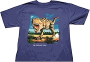 Clothes and Accessories! / Clothing, shoes, backpacks and more!  http://www.dinosaurfarm.com/tshirts.html