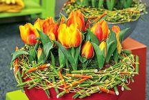 Tavaszi beültetések