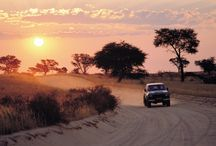 Counting down the days! 2weeks in kgalagadi!