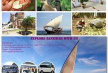 Zagas Explorer Services