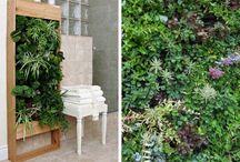 home garden ideas