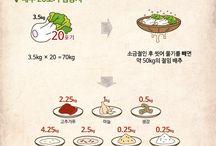 건강 음식